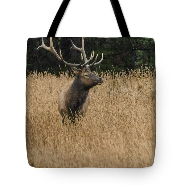 Bull Elk In Yellowstone Tote Bag