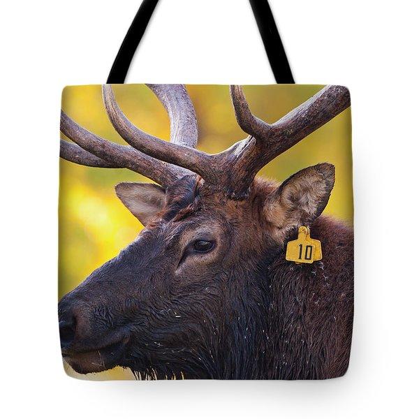 Bull Elk Number 10 Tote Bag