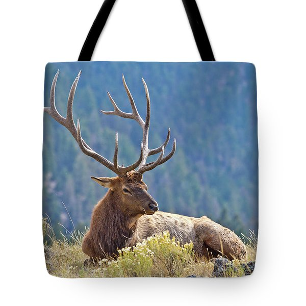Tote Bag featuring the photograph Bull Elk Resting by Wesley Aston