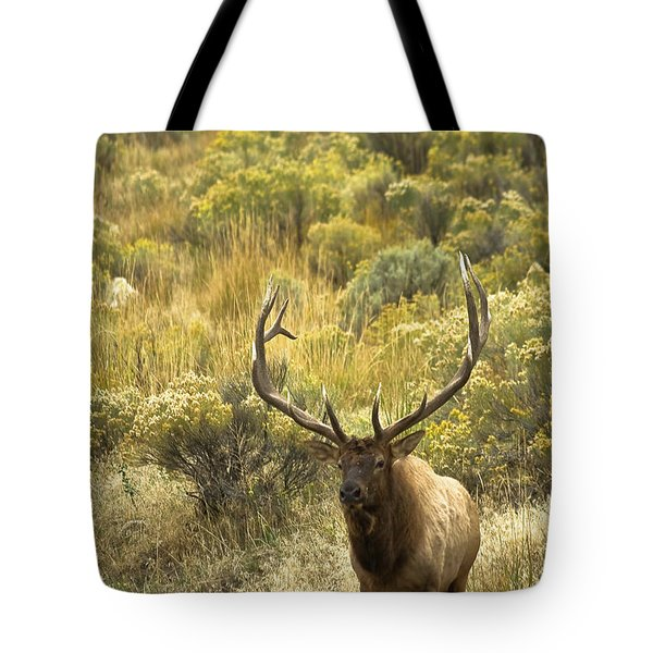 Tote Bag featuring the photograph Bull Elk by Roger Mullenhour