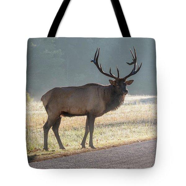 Bull Elk Watching Tote Bag