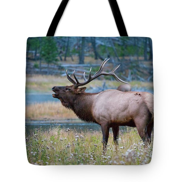 Tote Bag featuring the photograph Bull Elk by Wesley Aston