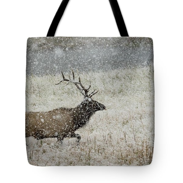 Bull Elk With Snow Tote Bag