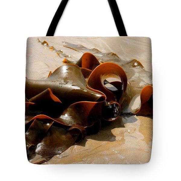 Bull Kelp Tote Bag by Lexa Harpell