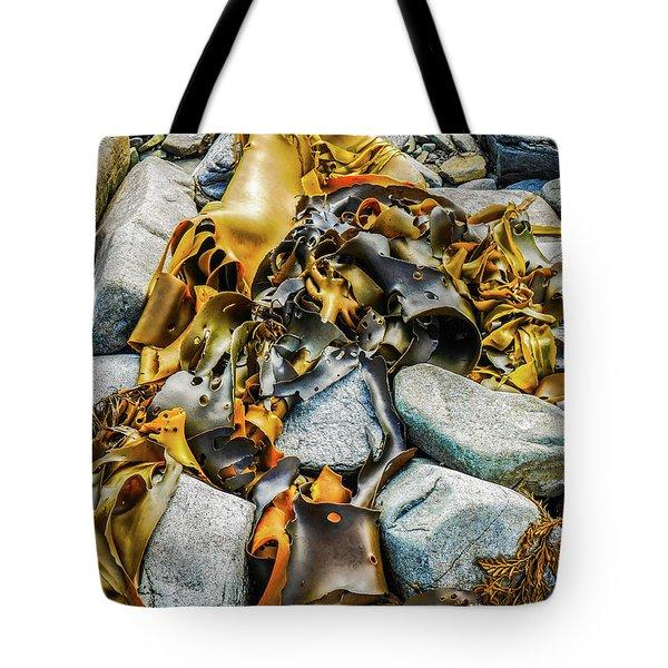 Bull Kelp On Blue Rocks Tote Bag by Lexa Harpell