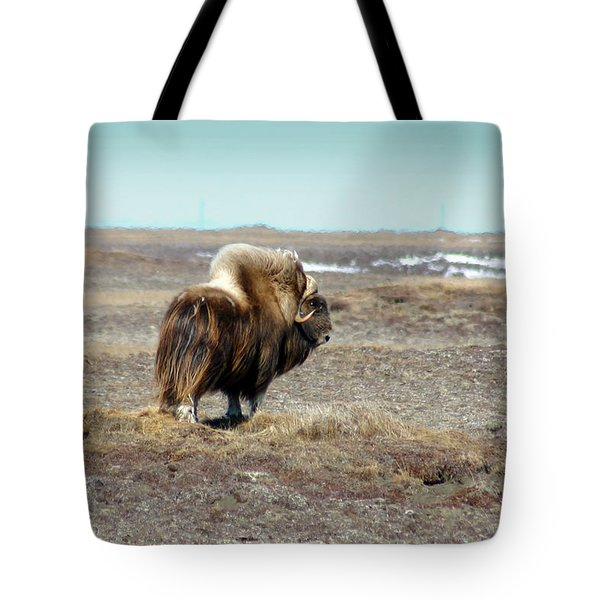 Bull Musk Ox Tote Bag by Anthony Jones