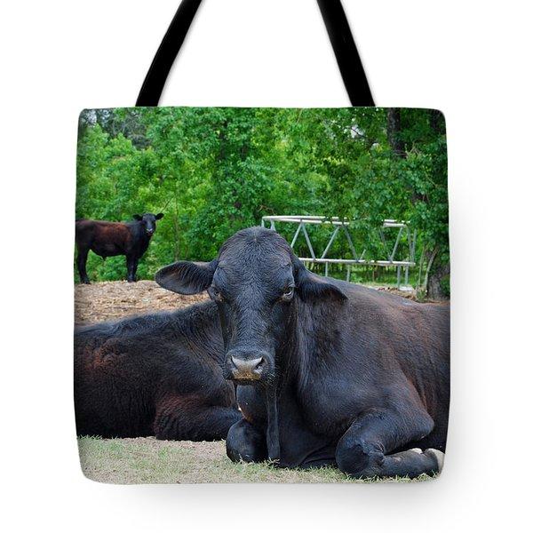 Bull Relaxing Tote Bag