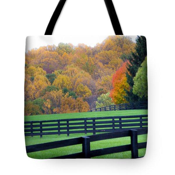 Bull Run Mountain 12 Tote Bag