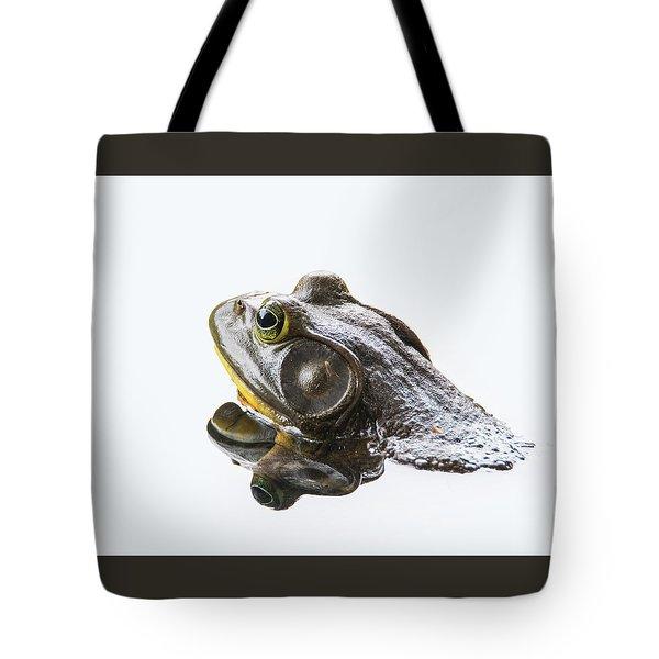 Bullfrog Tote Bag by Angie Vogel