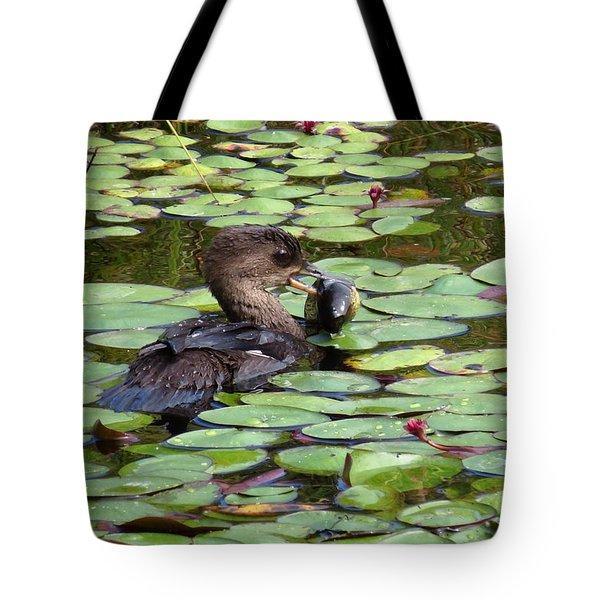 Bullfrog For Breakfast Tote Bag by I'ina Van Lawick