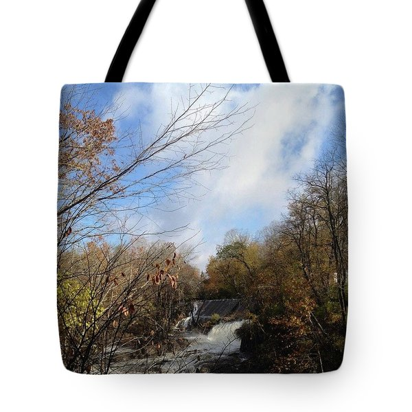 Bulls Bridge Tote Bag
