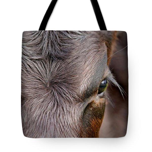 Bull's Eye Tote Bag