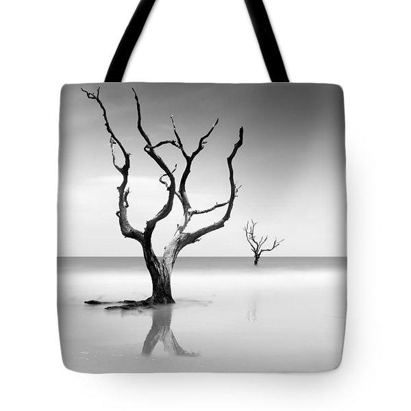 Boneyard Beach Xv Tote Bag