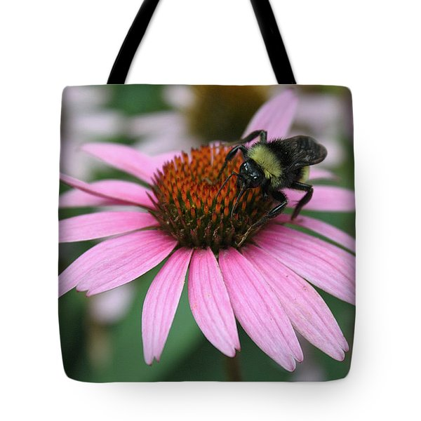 Bumble Bee On Pink Cone Flower Tote Bag by Sheila Brown