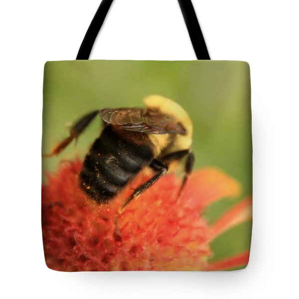 Tote Bag featuring the photograph Bumblebee by Chris Berry