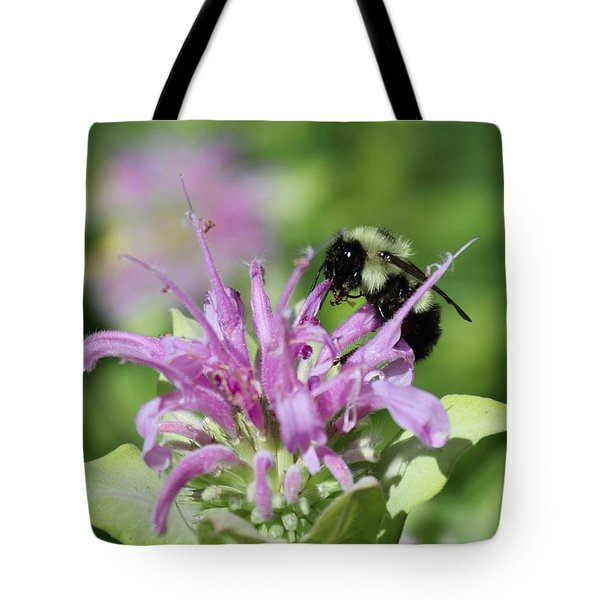 Bumblebee On Bee Balm Tote Bag