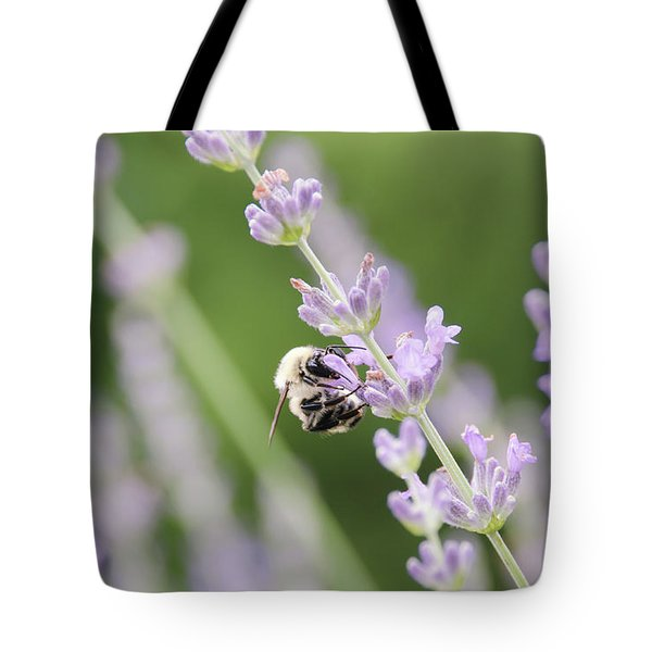 Tote Bag featuring the photograph Bumblebee On The Lavender Field 2 by Andrea Anderegg
