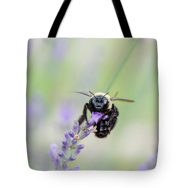 Tote Bag featuring the photograph Bumblebee On The Lavender Field by Andrea Anderegg
