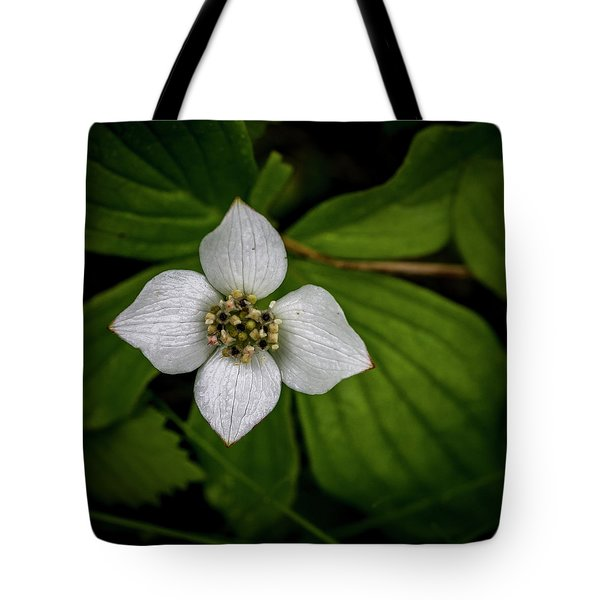 Tote Bag featuring the photograph Bunchberry Dogwood On Gloomy Day by Darcy Michaelchuk
