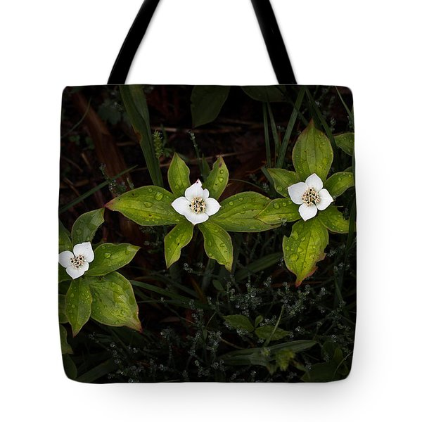 Bunchberry Flowers Tote Bag