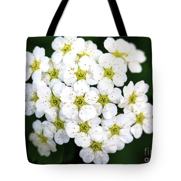 Bundle Tote Bag