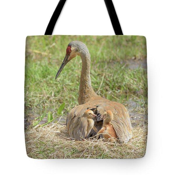 Bunk Mates Tote Bag by Jim Gray