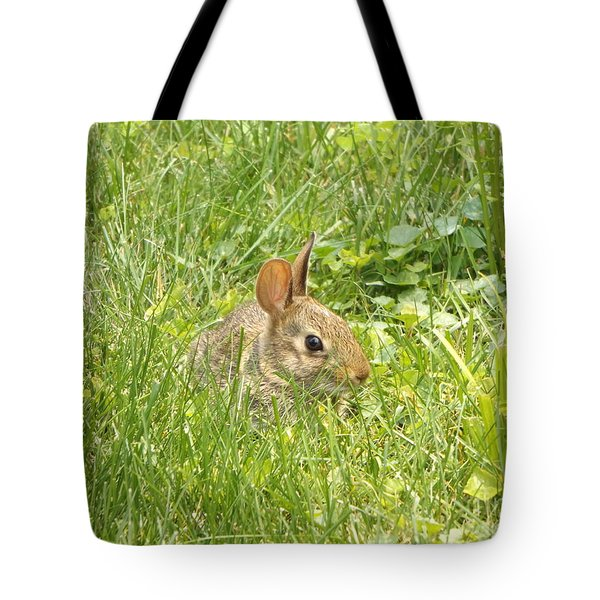 Bunny In The Grass Tote Bag by Erick Schmidt