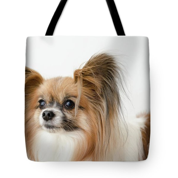 Tote Bag featuring the photograph Bunny by Irina ArchAngelSkaya
