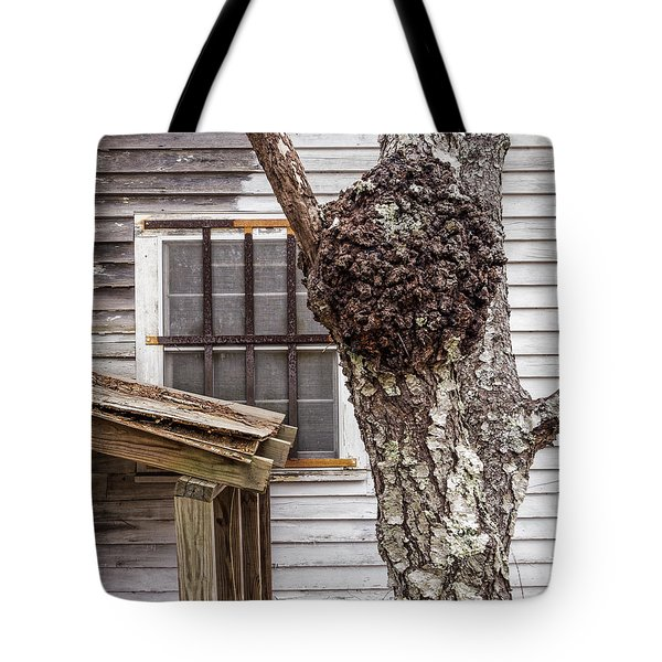 Burl And Window Tote Bag