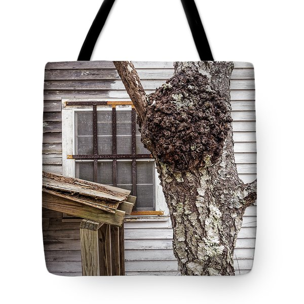 Burl And Window Tote Bag