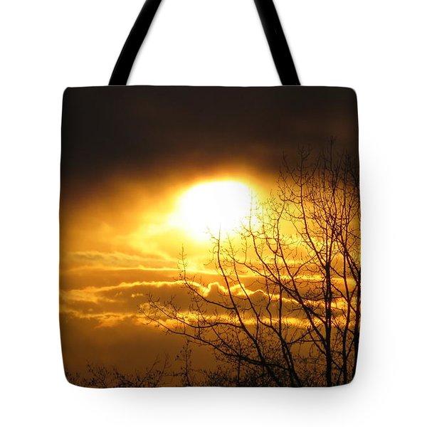Burnaby Mountain Tote Bag