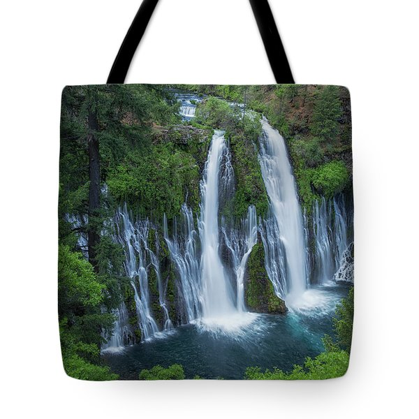 Tote Bag featuring the photograph Burney Creek Falls by Patricia Davidson