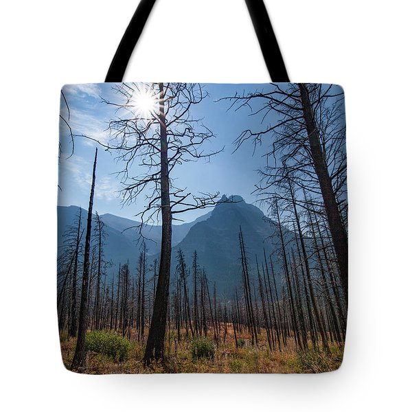 Tote Bag featuring the photograph Burnt Offerings by Lon Dittrick