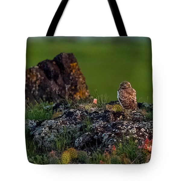 Tote Bag featuring the photograph Burrowing Owl In Cactus #1 by Yeates Photography