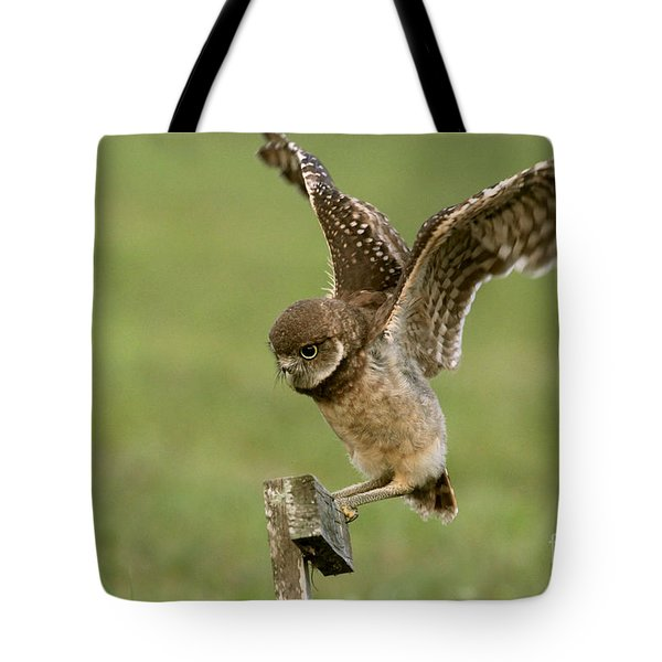 Burrowing Owl - Learning To Fly Tote Bag