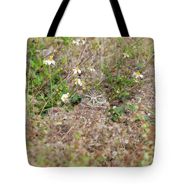 Burrowing Owl Outside His Home Tote Bag