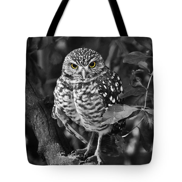 Burrowing Owl  Selective Color Eyes Tote Bag by Judy Wanamaker