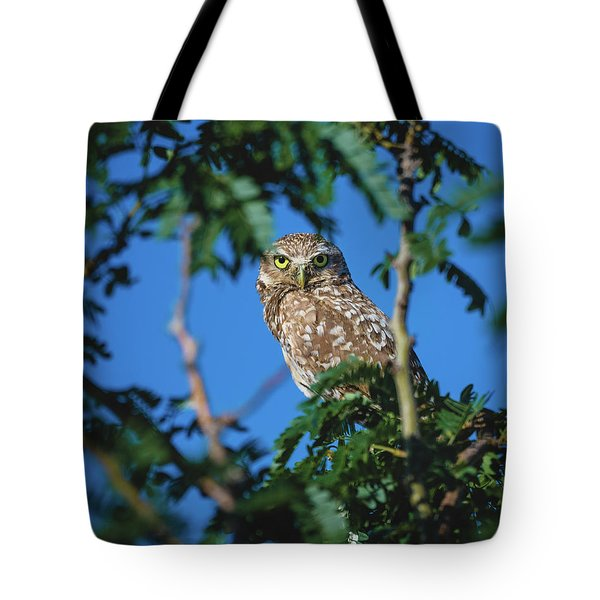 Burrowing Owl Sitting In A Tree Tote Bag