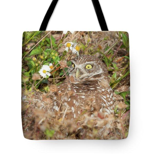 Burrowing Owl With Wide Eye Tote Bag