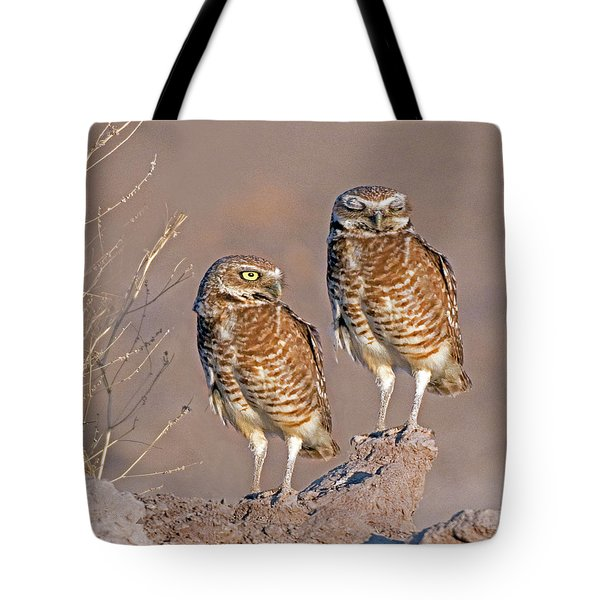 Burrowing Owls At Salton Sea Tote Bag