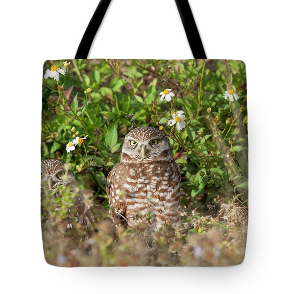 Burrowing Owls Outside Their Den Tote Bag