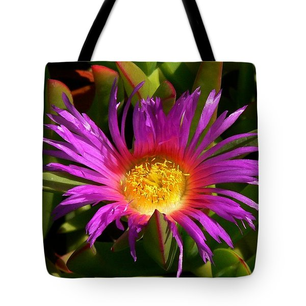 Tote Bag featuring the photograph Burst Of Beauty by Debbie Karnes