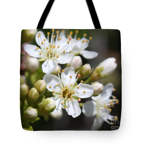 Tote Bag featuring the photograph Burst Of Spring by Anita Oakley