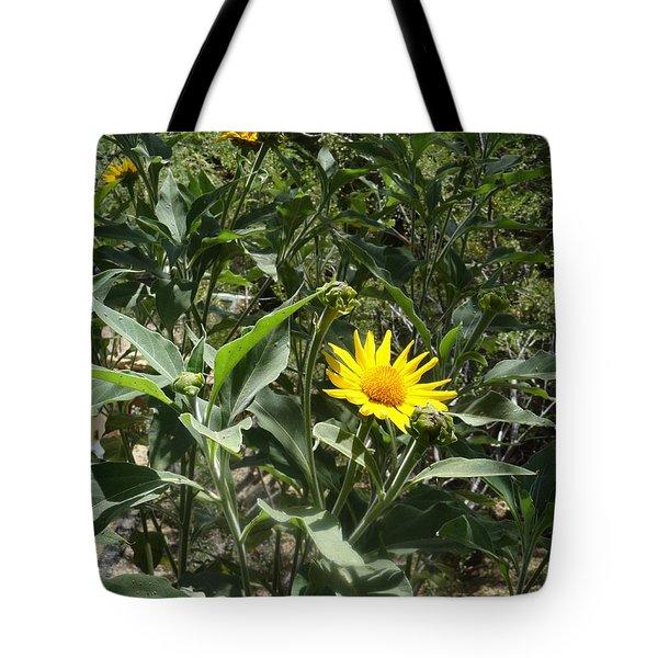 Burst Of Sun Flower Tote Bag