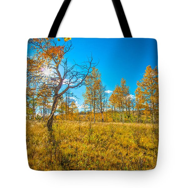 Bursting Through Gold  Tote Bag by Bijan Pirnia