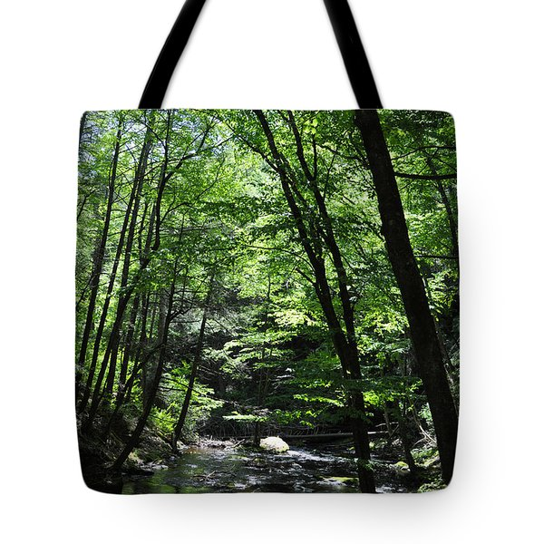 Bushkill Creek Tote Bag