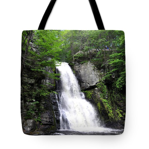 Bushkill Fall - Five Tote Bag