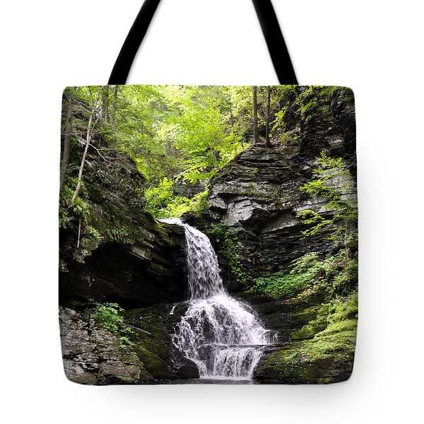 Bushkill Fall - Four Tote Bag