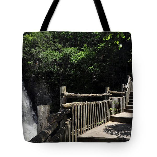 Bushkill Fall - Two Tote Bag