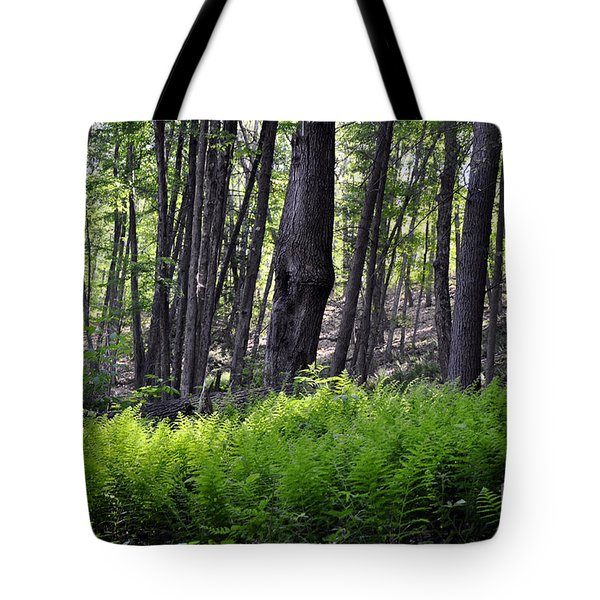 Bushkill Falls Ferns Tote Bag